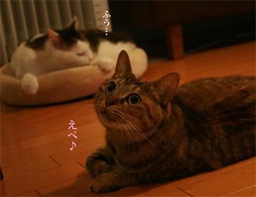090104_ふう.jpg