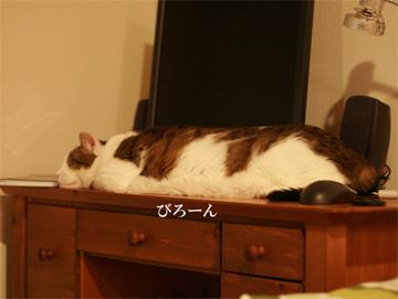 090107_びろん.jpg